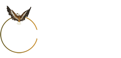 Logo of Eagle View - Private Investigators, Detectives and Tracking solutions in Birmingham, London, West Midlands, UK