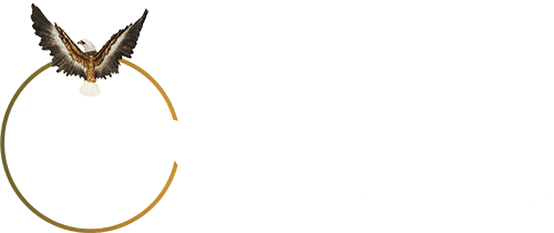 Eagle View Detection - Security Consultants in West Midlands, Birmingham, London, UK