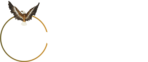 Eagle View Investigations - Private Investigators in West Midlands, Birmingham, London, UK